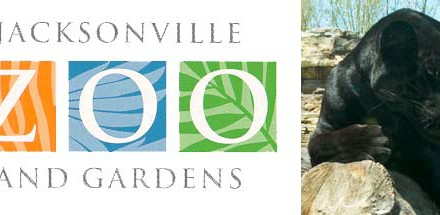 What will you Find at the Jacksonville Zoo and Gardens?