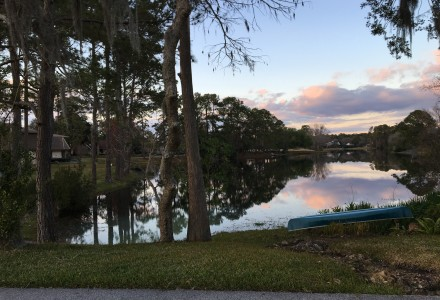 Living in Deerwood (the good, the bad, and the ugly)
